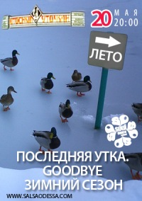 Последняя Утка. Goodbye зимний сезон!